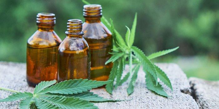 CBD oil for pain